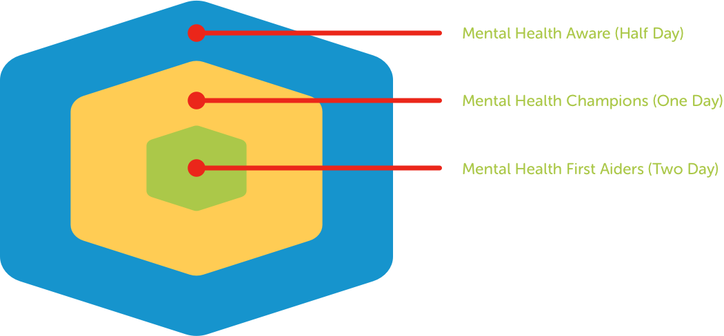 Infogram showing how Mental Health First Aid fits into an organisation.